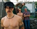 Red Hot Chili Peppers New Album I'M WITH YOU and Tour News!